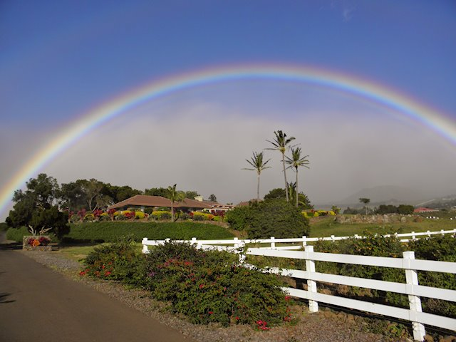 What's it Like to Live in Waimea?