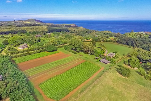 Rare Large-Acreage North Shore Coastal Homesite