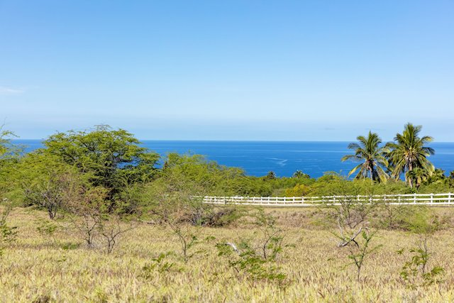 Views and Acreage in The Heathers at Kohala Ranch